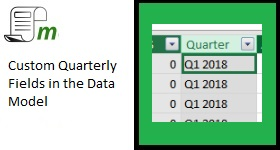 quarterly custom fields in the data model